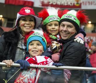 Kibice na meczu Polska - Irlandia [ZDJĘCIA]. Polacy! Jesteśmy z wami!