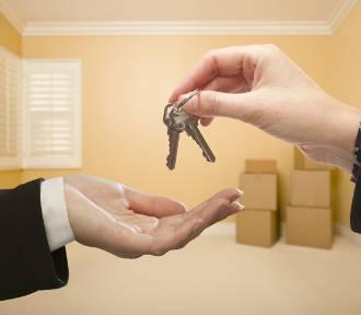 Jak przygotować się do rozmowy ze sprzedającym? Zadaj te pytania