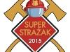 Superstrażak województwa śląskiego 2015