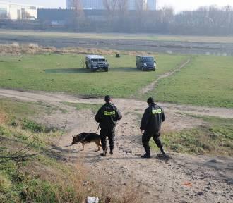 Policjanci przeczesywali tereny nad Wartą