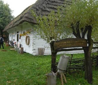 PROT: Skansen w Kolbuszowej to doskonałe miejsce dla całych rodzin