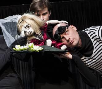 """""""Calineczka dla dorosłych"""" w Teatrze Powszechnym. Byliśmy na próbie [ZDJĘCIA]"""