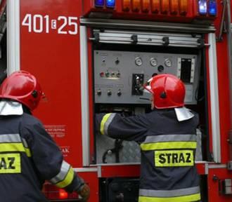 Pożar samochodów pod Bełchatowem. Spłonęły dwa volkswageny