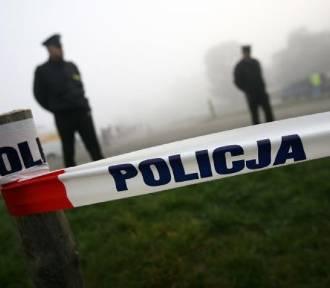 Śmierć na działkach w Toruniu. Znaleziono ciało 70-latki