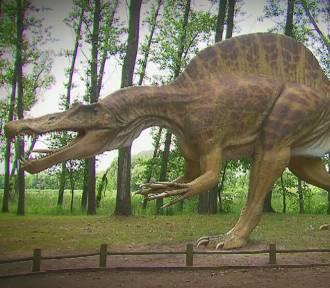 Niezwykłe dinozaury nad Jeziorem Rogowskim