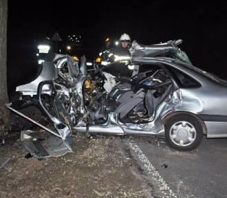 Samochód uderzył w drzewo. Kierowca nie żyje