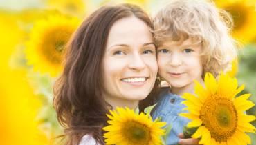 Przygarnij słonecznika z Katowic i zasadź w ogródku