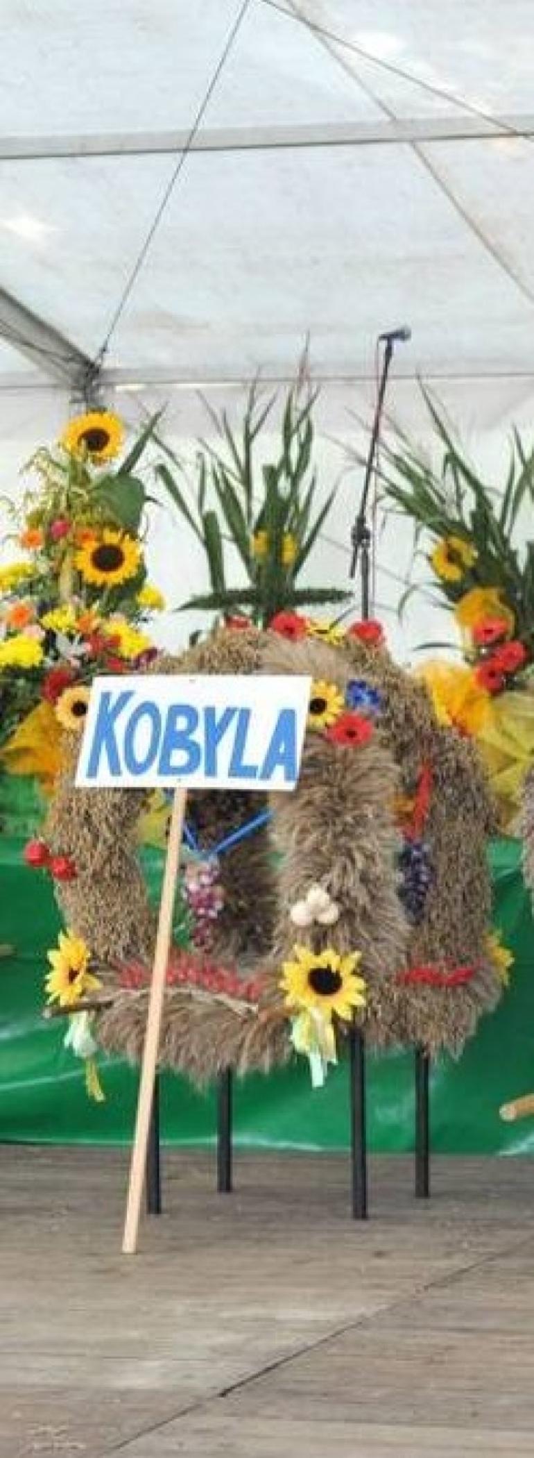 Korona sołectwa Kobyla