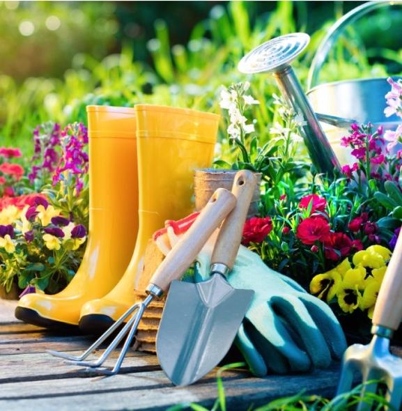 Nasze zielone miejsca – najpiękniejsze ogródki i balkony