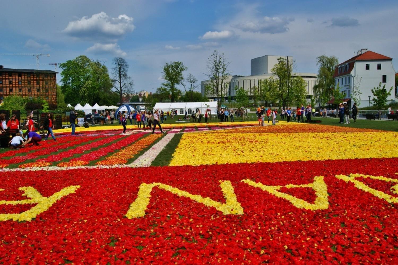 Bydgoskie Dywany Kwiatowe 2017 Naszemiastopl