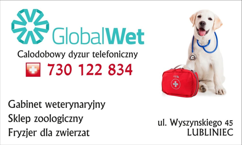 Global Wet Katalog Firm Serwisu Naszemiastopl