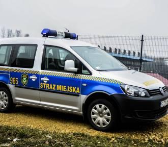 Straż miejska w Jastrzębiu: zabezpiecz rower przed złodziejami. W piątek, 13 kwietnia, akcja