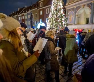 """Poznań: Zaśpiewali """"Cichą noc"""" na schodach ratusza [ZDJĘCIA]"""