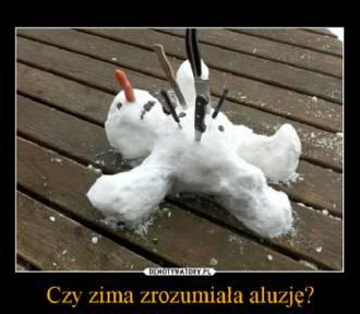 Koniec zimy! Zobacz pierwszy dzień wiosny oczami internautów [memy]