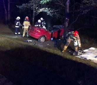 Śmiertelny wypadek między Toruniem a Bydgoszczą. Zobacz zdjęcia