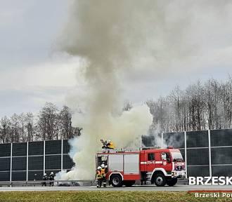 Biadoliny Szlacheckie. Pożar samochodu osobowego na autostradzie A4