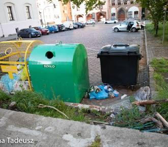 Podpatrzone w Stargardzie: nieładne widoki przy ratuszu. Nieskoszona trawa i porozrzucane śmieci