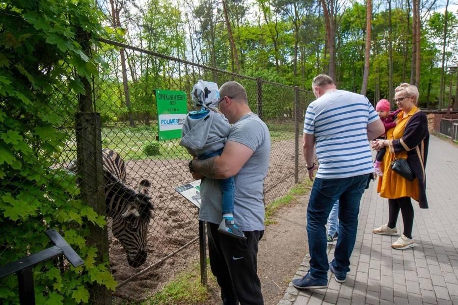 Bydgoskie zoo w Myślęcinku już otworzyło się na zwiedzających