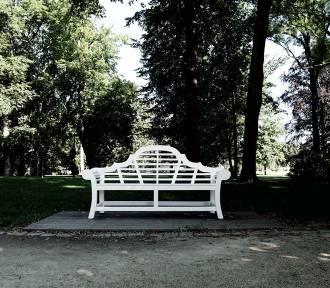 Ławka Bironów wróciła na swoje miejsce w sycowskim parku! Jest ładniejsza od poprzedniej