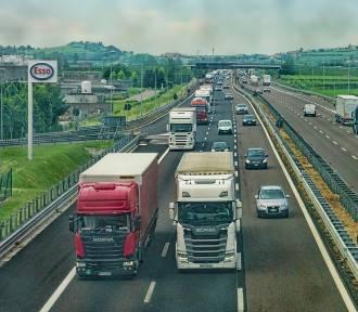 Targi Transportu i Logistyki, Warszawa 2019. Wydarzenie biznesowe dla osób związanych z transportem,