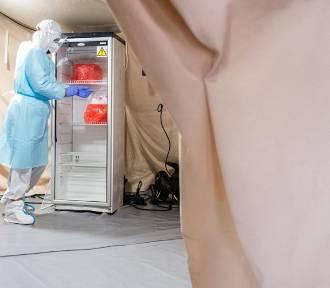 Znów niepokojąca liczba zgonów w Lubuskiem. W kraju mniej przypadków koronawirusa