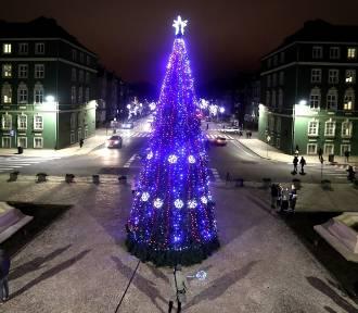 Świątecznie w Szczecinie. Choinka przed urzędem miasta już świeci! [ZDJĘCIA]