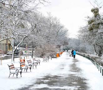 Zima wróciła do Przemyśla. Czy zostanie z nami na dłużej? [ZDJĘCIA]