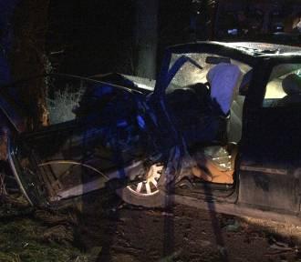 Wypadek w Żuławce Sztumskiej - kierowca audi odwieziony do szpitala