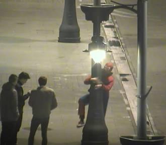 W nocy po Piotrkowskiej spacerował... Spiderman [FILM, zdjęcia]