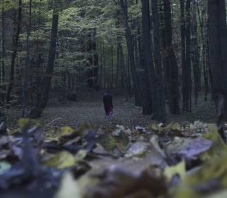 Tarnowskie Góry: młodzi mieszkańcy stworzyli film. Pomagał im aktor Piotr Trojan
