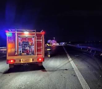 Dziki wbiegły na autostradę A4. Cztery auta rozbite, pięć osób rannych [ZDJĘCIA]