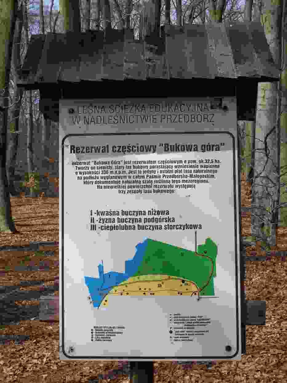 Tablica informacyjna w rezerwacie Bukowa Góra
