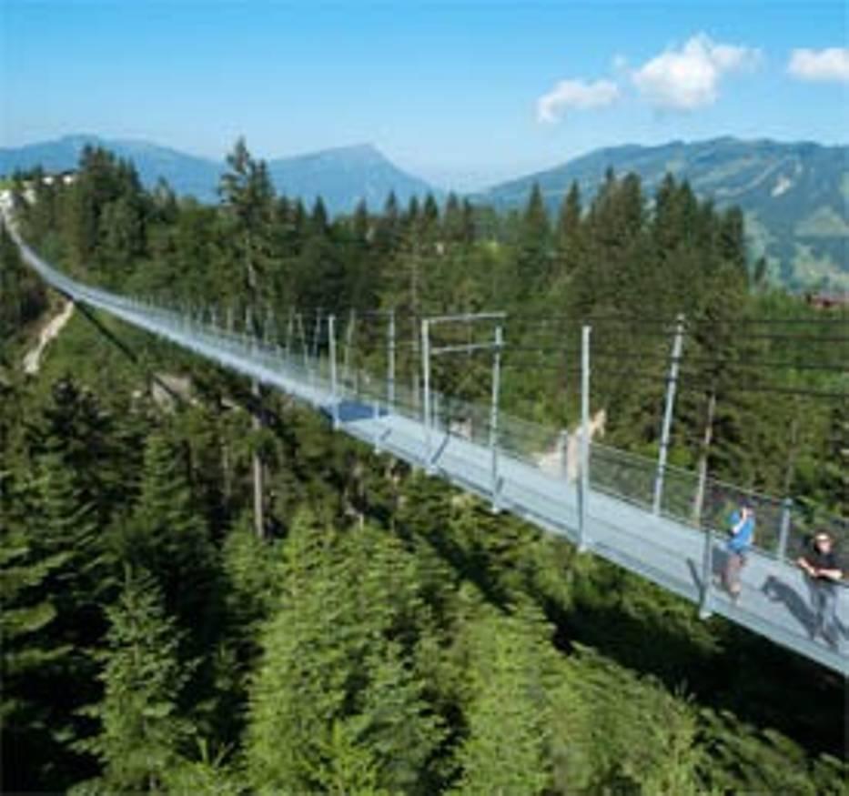 Widok mostu z Alpami w tle