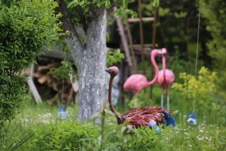 Niezwykłe dekoracje ogródków działkowych w SosnowcuZobacz kolejne zdjęcia