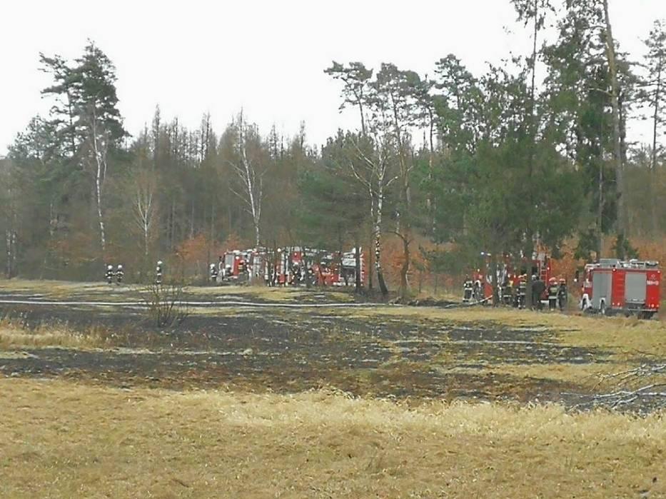 Strażacy z powiatów gliwickiego, raciborskiego i rybnickiego gasili pożar łąki w Białym Dworze