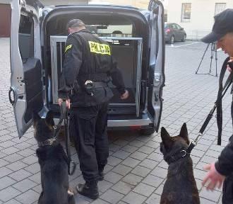 Specjalistyczne samochody dla policji w naszym regionie. Do czego będą służyły?