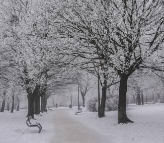 Pogoda w Łodzi i regionie na poniedziałek