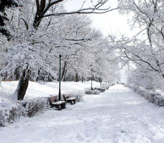 Zima w Krośnie Odrzańskim kilkanaście lat temu. Zdjęcia miasta w śniegu