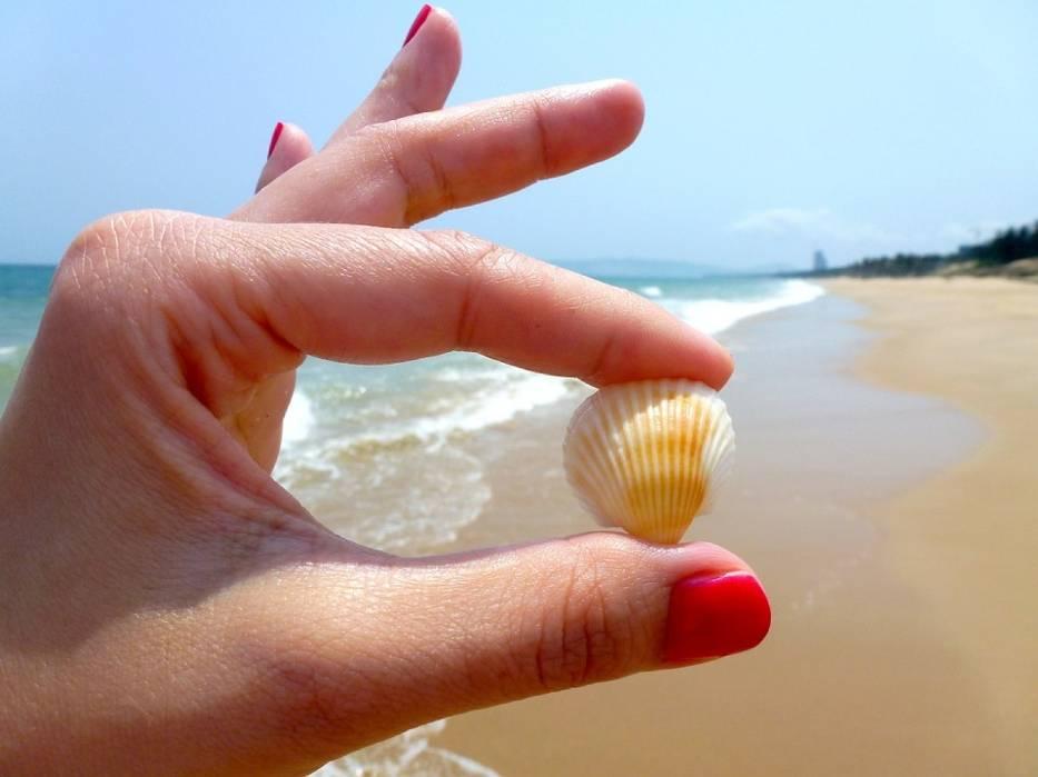 Projekt Plaża ponownie zagości w Olsztynie