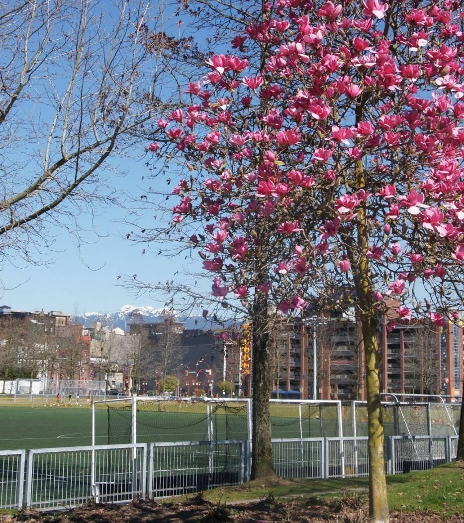Vancouver BC Canada - wiosna 1