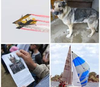Wydarzenia dnia: Poniedziałek 30 maja w Poznaniu i Wielkopolsce
