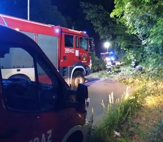 Drzewa jedno po drugim spadały na drogę w Walimiu. Pozostałe są zagrożeniem