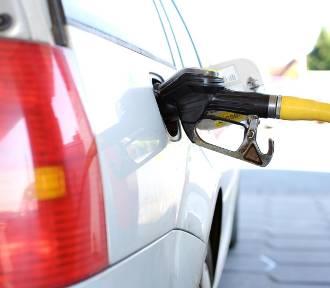 Ceny paliw w Kaliszu. Sprawdziliśmy jak wyglądają na poszczególnych stacjach ZDJĘCIA