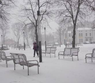 Zima w Elblągu w 2013 r. Zobaczcie zdjęcia