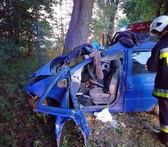 Tragedia na drodze. W wypadku zginął 35-letni mężczyzna [ZDJĘCIA]