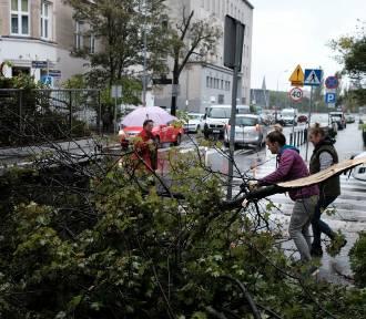 Orkan Ksawery: Poważne zniszczenia w całej Wielkopolsce. Nie żyje jedna osoba [WIELKA GALERIA]