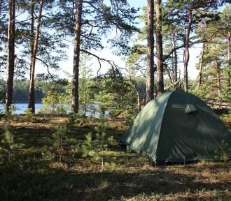 Można nocować w lasach. Sprawdź, gdzie w powiecie gdańskim wyznaczono miejsca