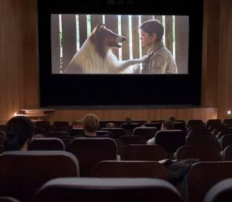 Kino Centrum w Brzegu zaprasza. Najtańsze bilety są w środę