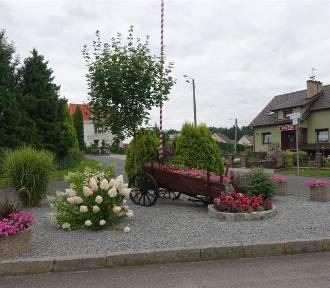 Znamy najpiękniejsze opolskie wsie w 2021 roku [WYNIKI]