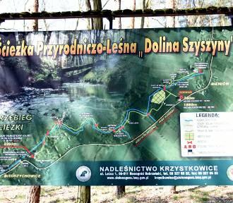 Pomysł na weekendowy wypad w okolicy Żar. Ścieżka przyrodnicza Dolina Szyszyny
